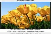 优道图片版权保护控件 1.6