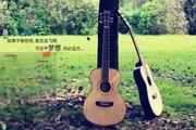 清新草坪上吉他伴侣主题 1.6.0.3