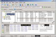 SoftPerfect Network Protocol Analyzer 2.9.1