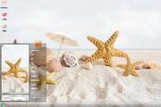 海滩海星风景主题 1.6.0.3