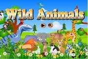 寻找野生动物...