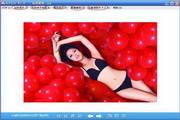 多功能图片加密软件(ECPSee) 2.0
