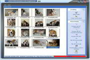 Batch JPEG Rotator (64 Bit) 2.11