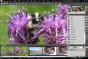 Musemage For Mac 1.9.6.5363