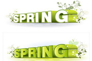 spring花纹立体字矢量图