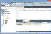 SQLyog x64 11.5.0 Beta 1