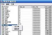 数据库编辑工具 1.01