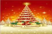 矢量圣诞节卡片03