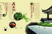 中华茶文化PSD免费素材