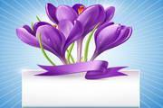 精美花卉装饰背景图矢量