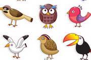 卡通鸟类形象矢量图