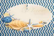 沙滩贝壳矢量图