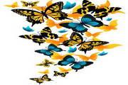 矢量蝴蝶素材6