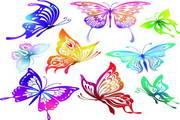 矢量蝴蝶素材7