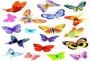 矢量蝴蝶素材20
