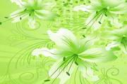 炫丽花卉装饰背景图矢量