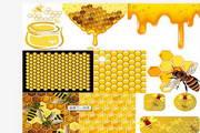 矢量蜜蜂03