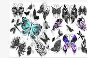 矢量蝴蝶22