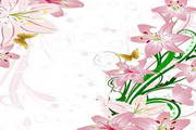 粉色百合花边矢量素材