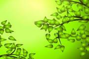 春季亮绿背景矢量素材图