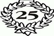 矢量数字25