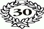 矢量数字30