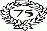 矢量数字75