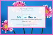 管理认证证书PPT...