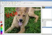 Pinta For Mac 1.4