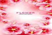 花纹背景素材8