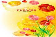 花纹背景素材9
