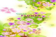花卉花纹素材5