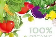 蔬菜混合矢量免费背景图