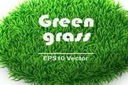 创意环保绿草文本背景矢量素材