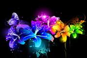 色彩花纹背景矢量图
