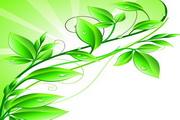 绿色树叶花纹矢量图