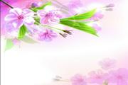 粉色桃花装饰横幅矢量素材