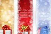 精美圣诞节礼盒竖幅矢量图
