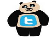 可爱小熊标志图标下载