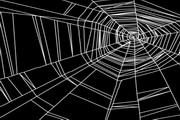蜘蛛网与花纹花边矢量图