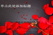 玫瑰花瓣PPT模板