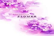 花卉花纹素材6