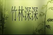 古筝曲竹林PPT模板