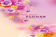 花卉花纹素材9