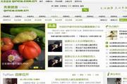 中医养生资讯全套psd网站模板