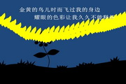夜之花ppt模板