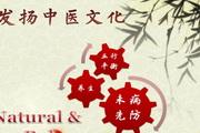 中医文化PPT模板