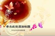 蝴蝶花纹PPT模板