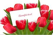 矢量浪漫花卉装饰背景图