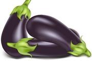 茄子蔬菜矢量图